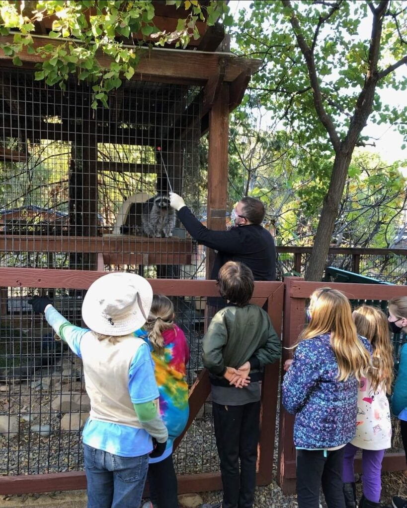 Jr Zookeeper Camp